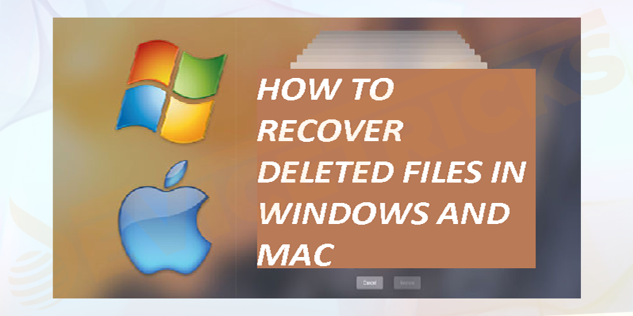 Is it possible to Recover Deleted Files?