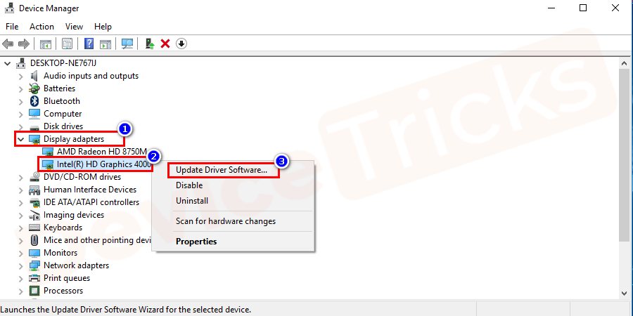 Select the Graphic Card, right-click on it and then choose 'Update Driver' from the drop-down menu.