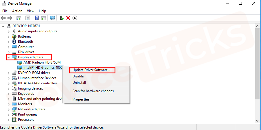 After getting into the 'Device Manager' navigate for the 'Display Adapter' feature, click on the arrow button and from the expanded list, select your graphics card. and right-click on the selected card. Then choose an option to 'Update Driver Software'.